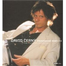 DAVID ČERNÝ Promrdané roky III The Fucking years III