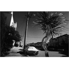 San Francisco. 2004